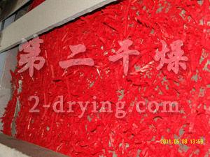 颜料单层带式干燥