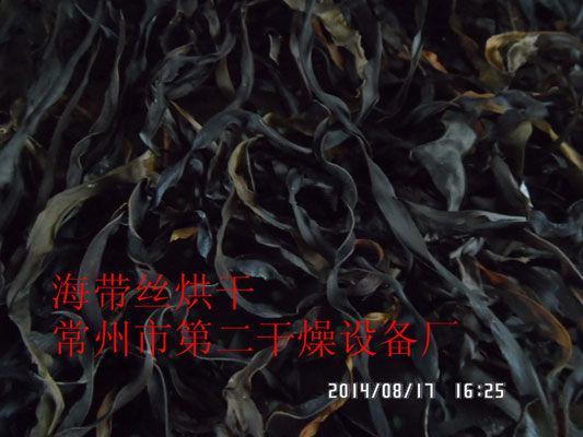 DWD 带式脱水蔬菜爱博体育app注册